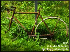 bestes_fahrrad_01_1600x1200